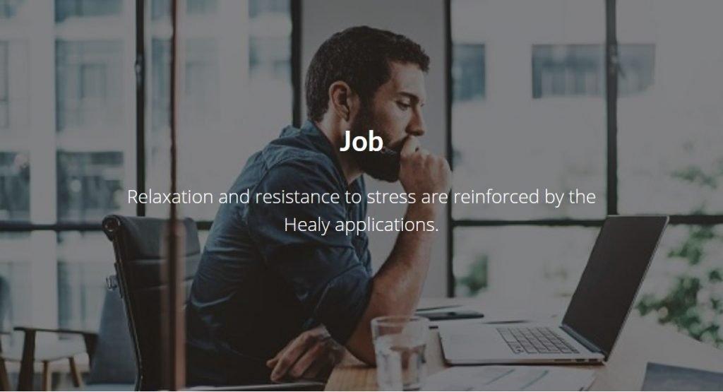 Healy Resonance Job and Sleep Balance Programs Image