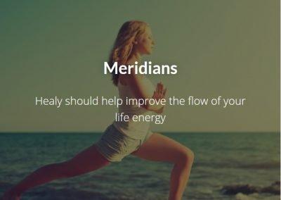 Meridians 1